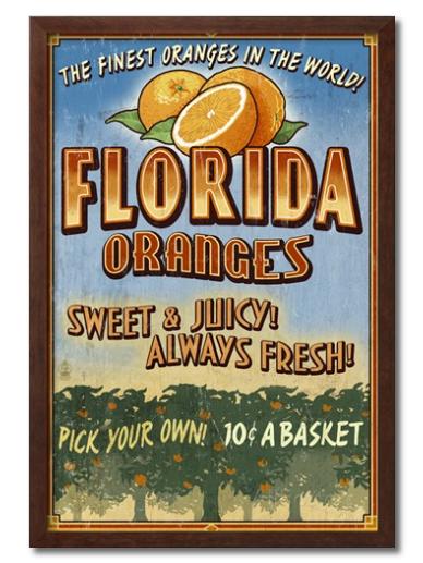 florida-oranges
