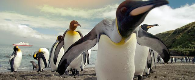 Antarctic_expeditions